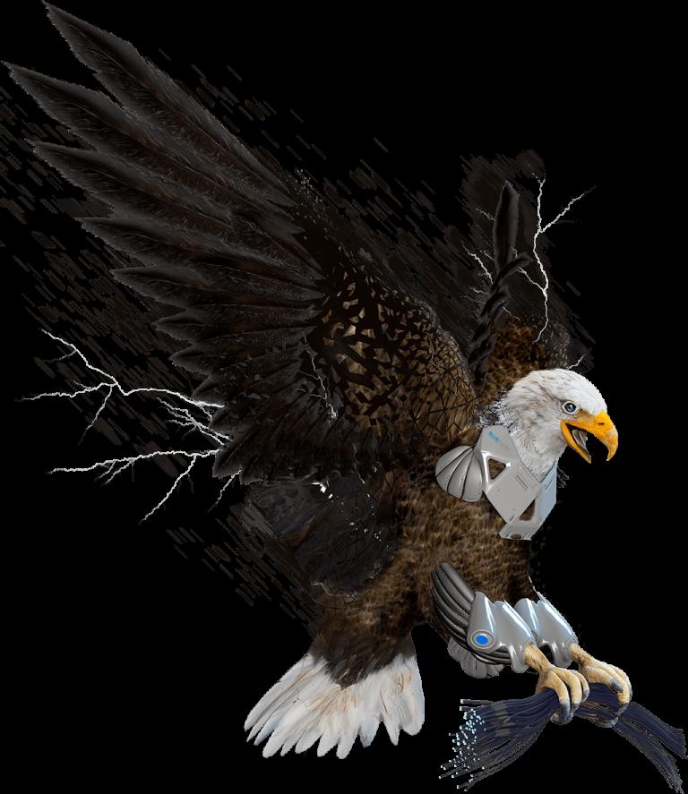 Eagle 1024