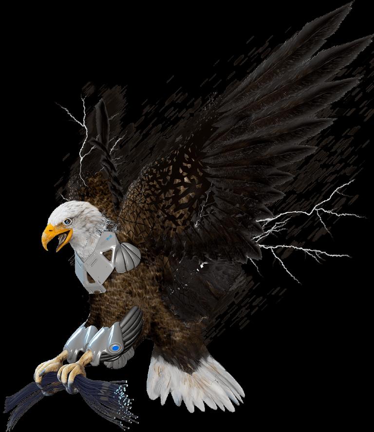 Eagle 1024 flipped