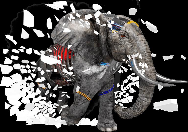 Elephant 1024