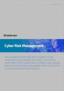 Cyber Risk Management Whitepaper