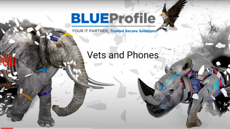 Vets Telephone Systems BLUE Profile